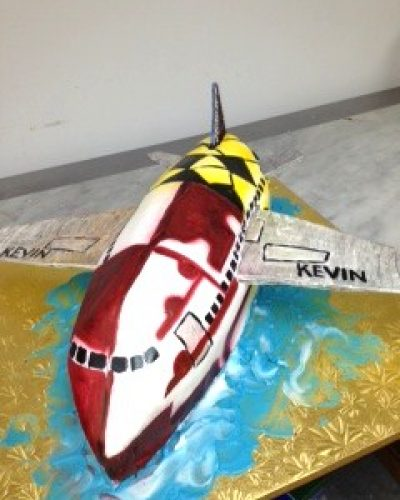 airplane-grooms-cake